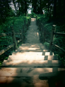 Path - Mt. Vernon, Virginia
