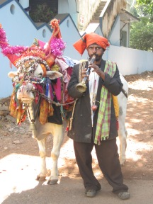 Cow and Man - Palolem, India