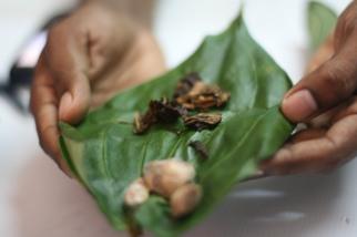 Betel nut up close - Colombo, Sri Lanka