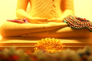 Buddhafeet