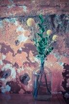 Blue Scorcher, Astoria - Erin J. Bernard