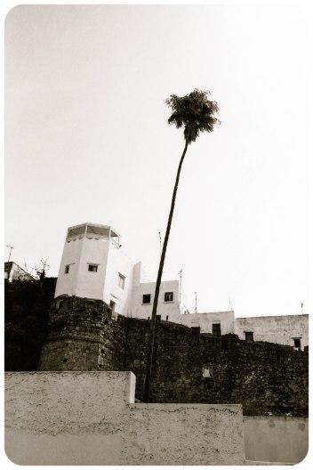 Rue de la Kasbah, Tangier - Erin J. Bernard