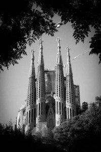 Sagrada Familia, Barcelona - Erin J. Bernard