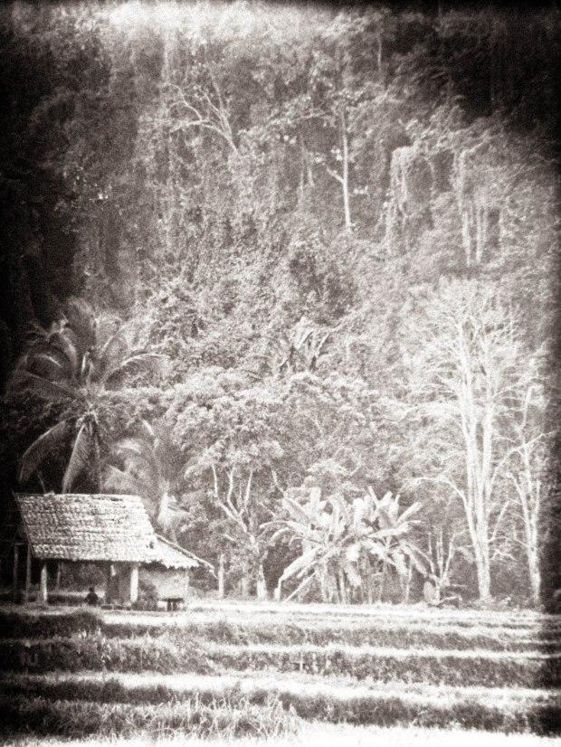 Northern Thailand - - Erin J. Bernard/erinjbernard.net