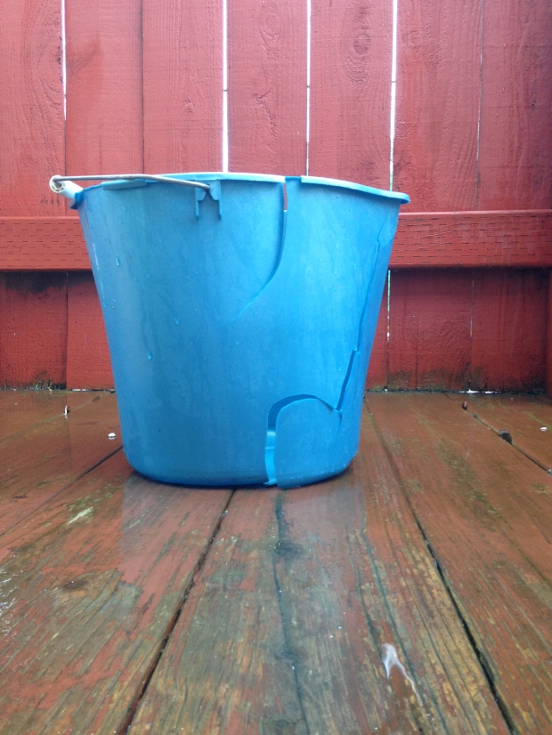 leaky bucket, hole in my bucket, erin j bernard, blue bucket